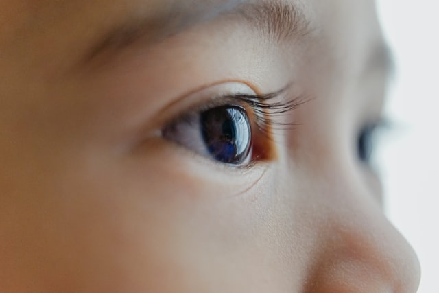 une lentille de vue -3